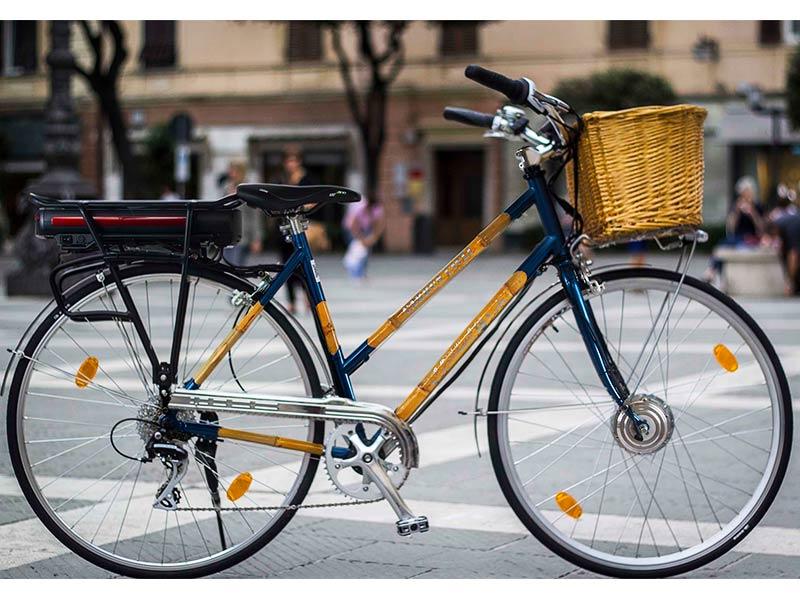 Bicicletta personalizzata telaio bambù - Carrus Cicli biciclette Savona